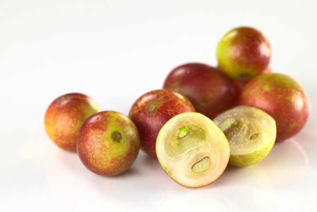 Camu Camu the new super food will not just help you loose weight  - it also does this....