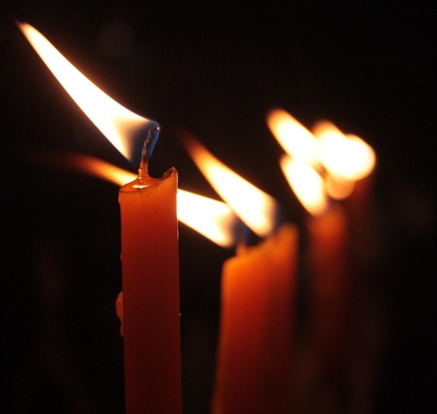 Wir traueren in diesen Tagen mit all denen, die angesichts der terroristischen Anschläge Familie oder Freunde verloren haben. Die Anschläge in Paris, aber auch Ankara, Beirut und Bagdad erfüllen uns mit tiefem Entsetzen. (14.11.2015)