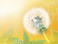 Лето самое теплое время года. Летом все вокруг зеленым-зеленое, цветут сады, поют птицы, ласково светит солнце и иногда поливают теплые дожди.