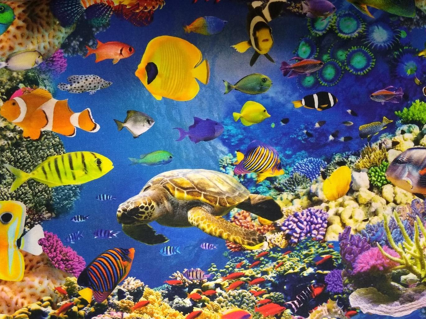 Canvas Ozean, 100% Baumwolle, 140cm breit, 0.5m 9.50€