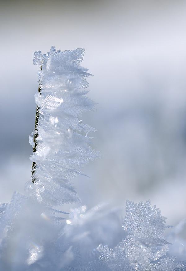 Die Natur selbst kreiert die schönsten Formen.