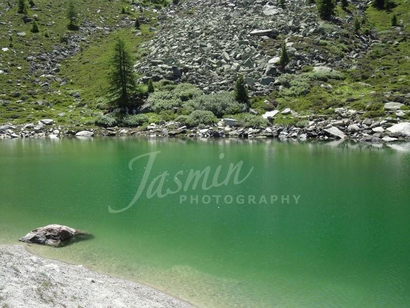 Grünsee im Sommer