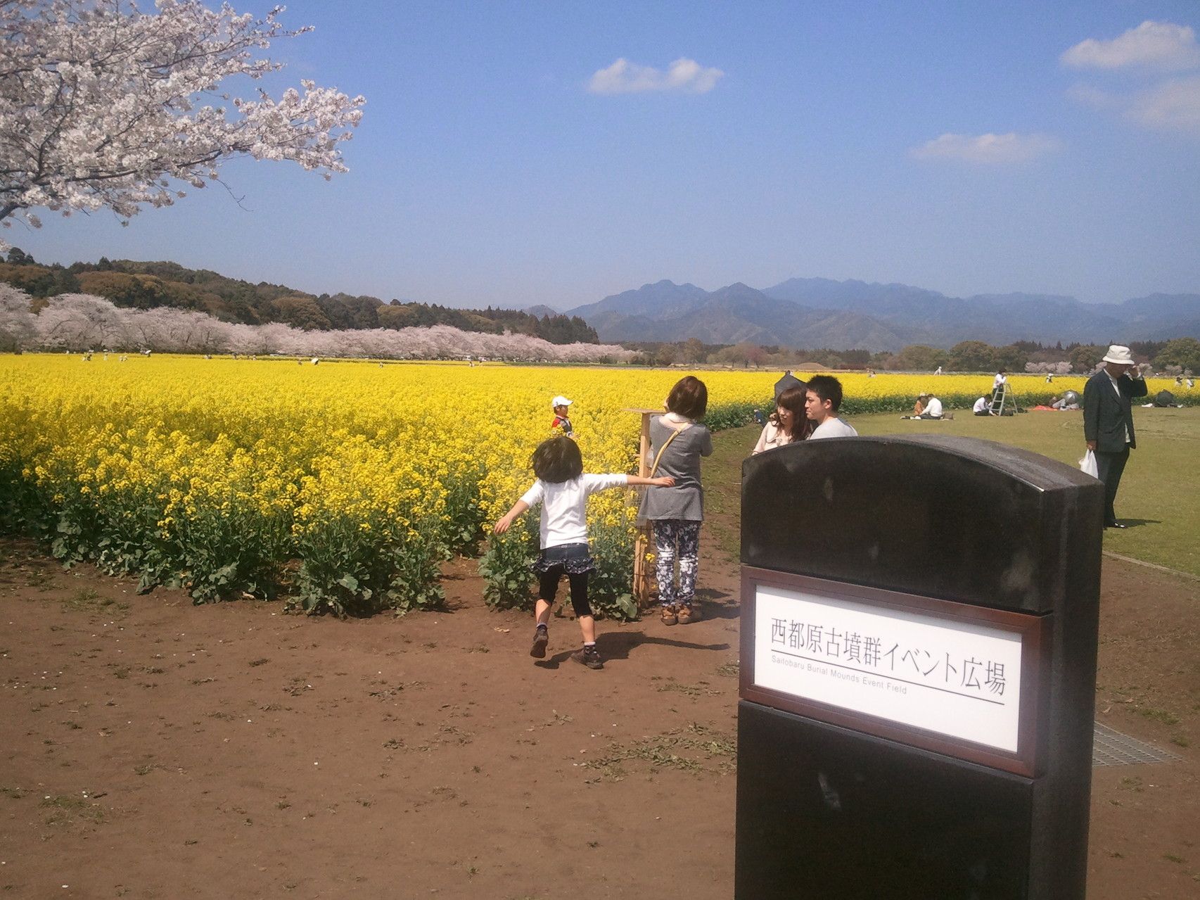 宮崎で足こぎ車椅子を展示