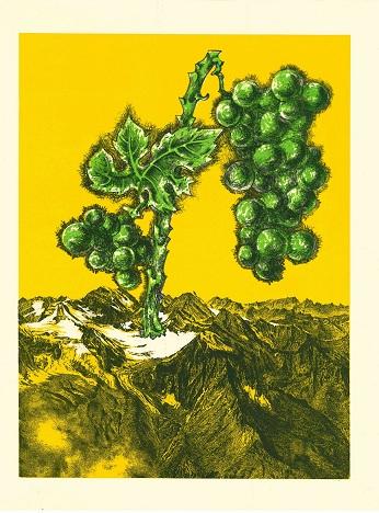 Lithographie - Le Renard et les Raisins