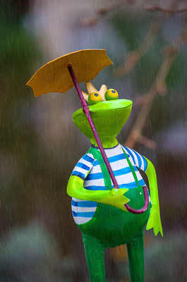 Blog-Frosch-Frosch mit Regenschirm