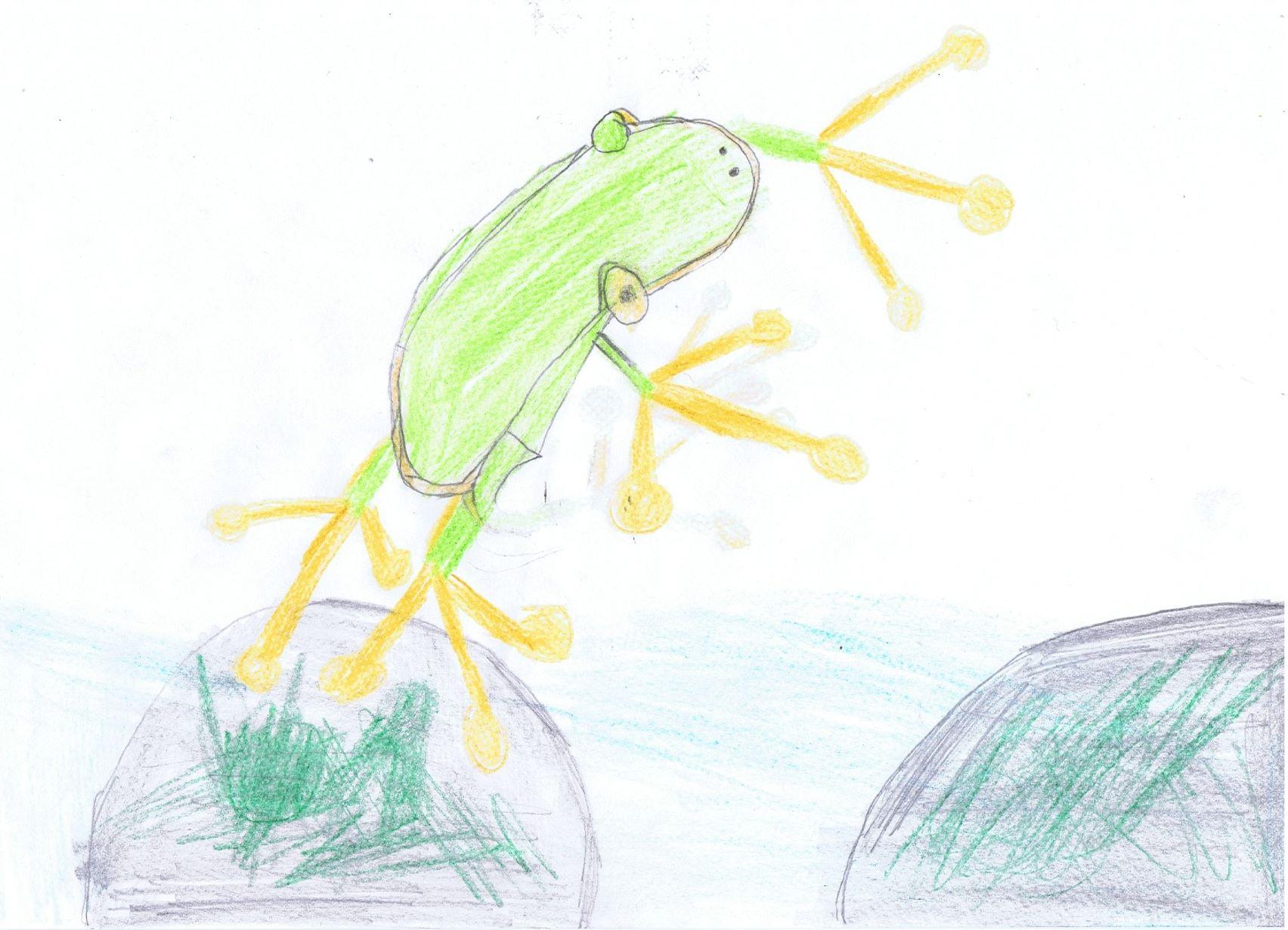 Wetterbericht vom Frosch - 12. August