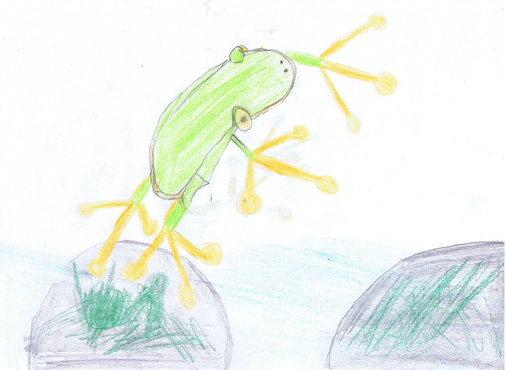 Wetterbericht vom Frosch - 8. August