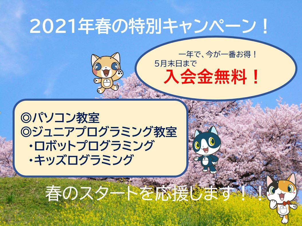 春の特別キャンペーンスタート!!