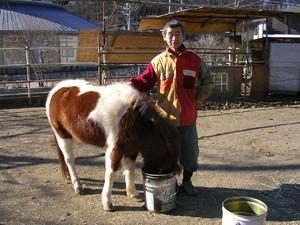 これは知り合いの馬君