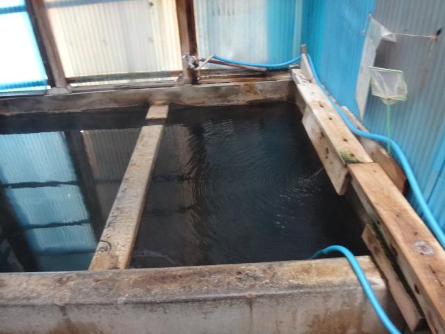 愛知県の綺麗な水は、手術後回復期に相性抜群な温泉いやし整体です。