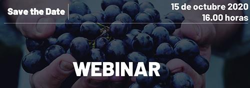 """OIVE organiza el próximo 15 de octubre un encuentro online para presentar su""""Estudio de costes de producción de uvapara la elaboración de vino en España"""""""