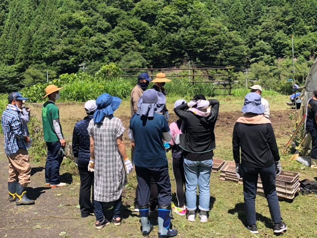 【活動報告】水窪じゃがた収穫ボランティア