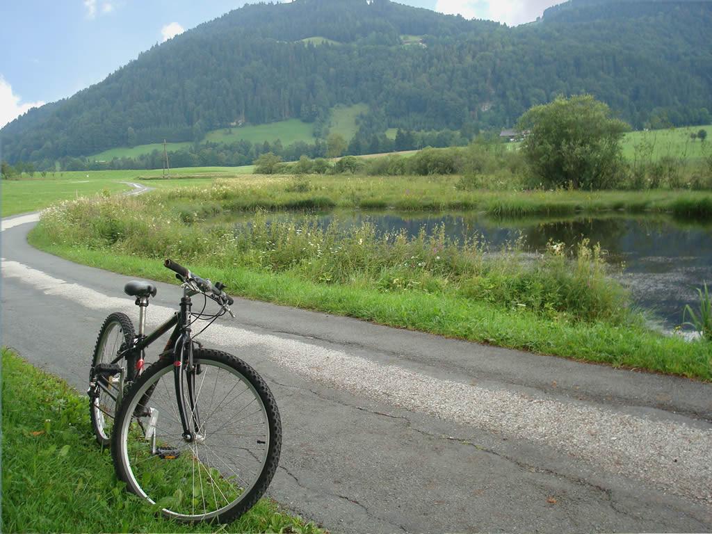 "Naturschutzgebiet alpines Hochmoor ""Schwemm"""
