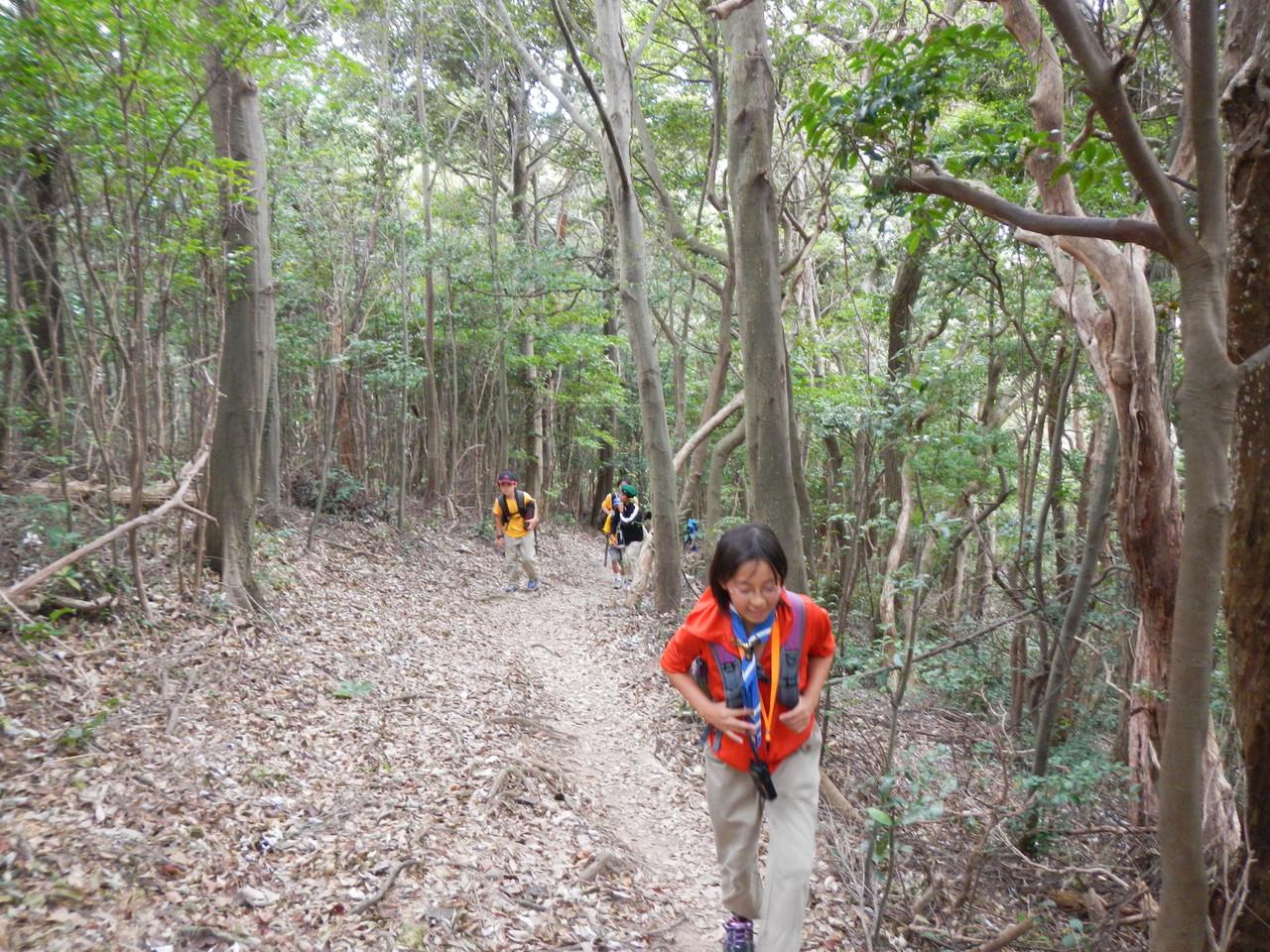 尉ヶ峰ハイキングコース