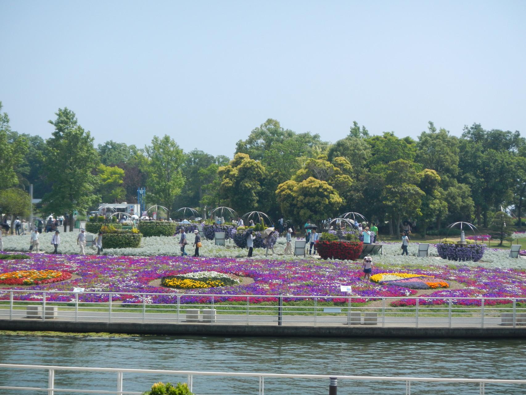 浜名湖ガーデンパーク見学中