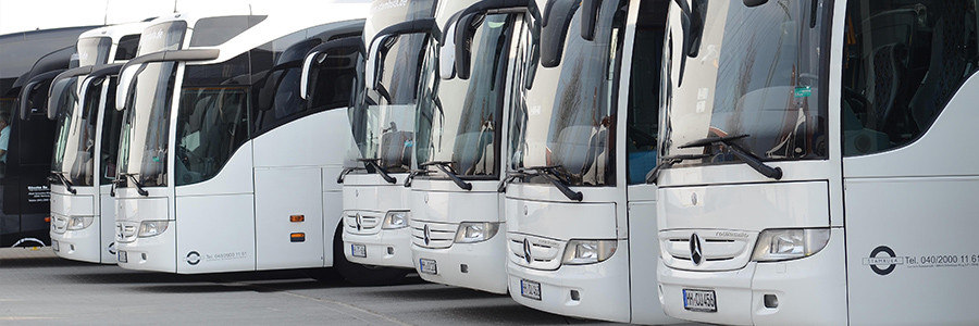 Fernbusreisen Stambula