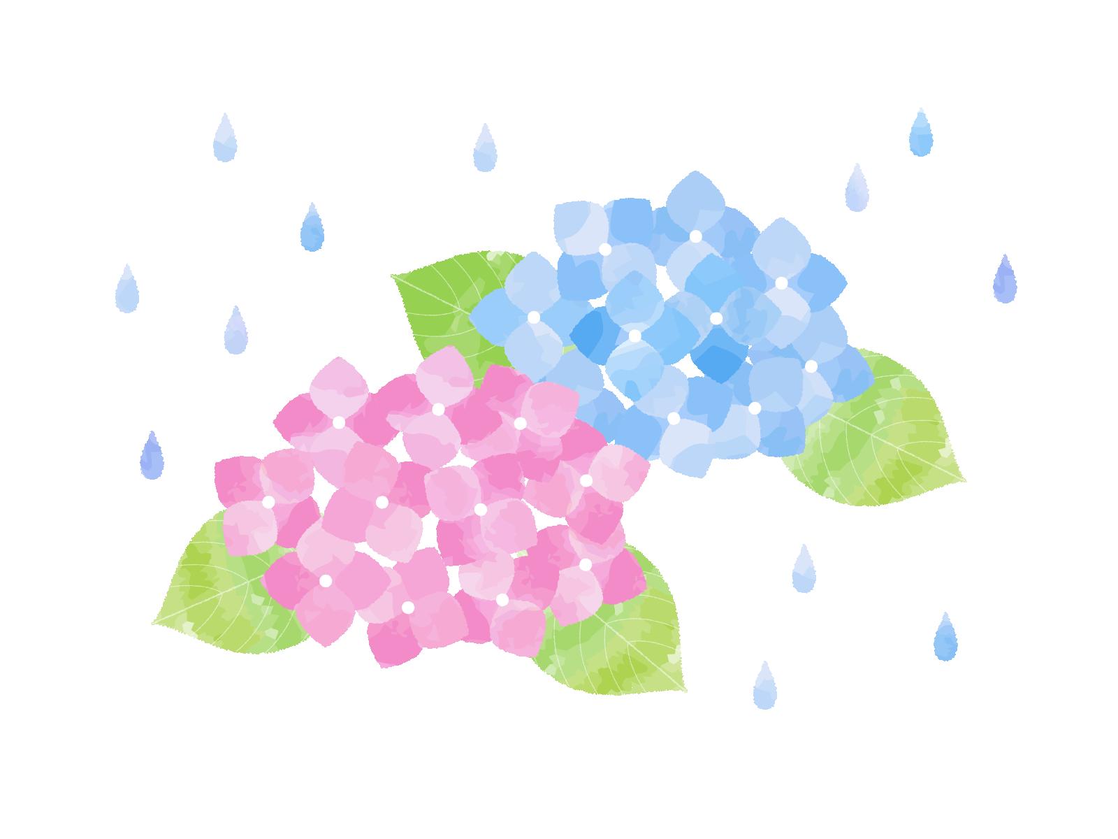 梅雨と中医学