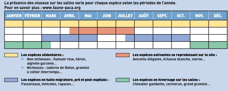 Source : https://metropoletpm.fr/tpm/article/salins-d-hyeres