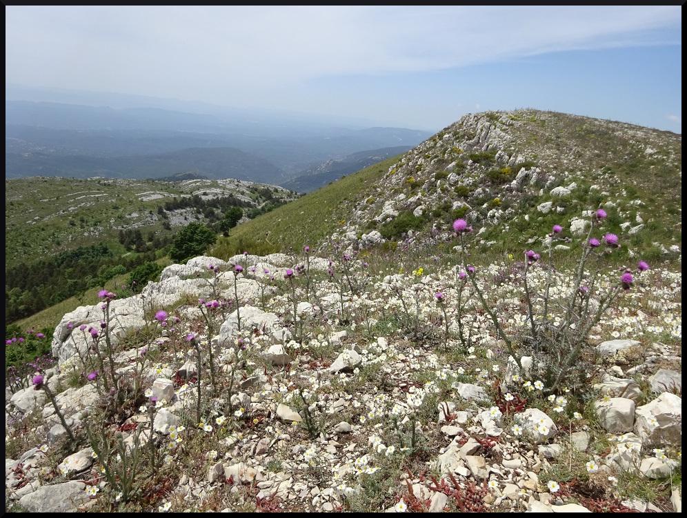Vue depuis le sommet de la montagne de Thiey