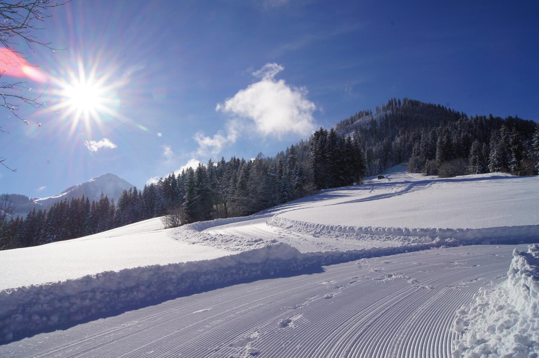 Ski run 16a