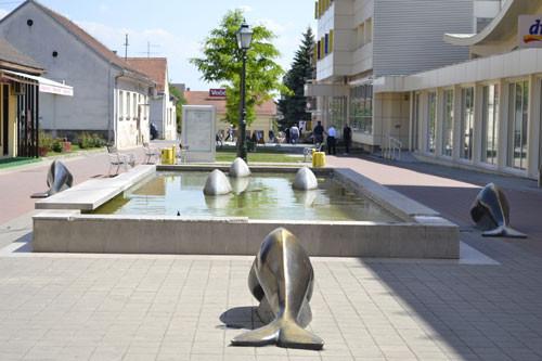 delfini u bjelovaru (?)