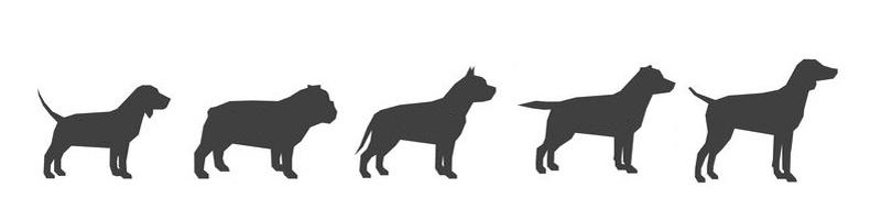 Kotgreifer für mittlere Hunderassen