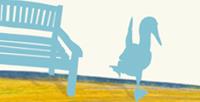 Postkarte Detail: Blaufußtölpel klatschen und tratschen / kängorooh / 2019