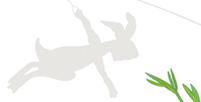 Plakat Detail: Angler Hase Emil und Flieger Hase Alfred / kängorooh / 2019