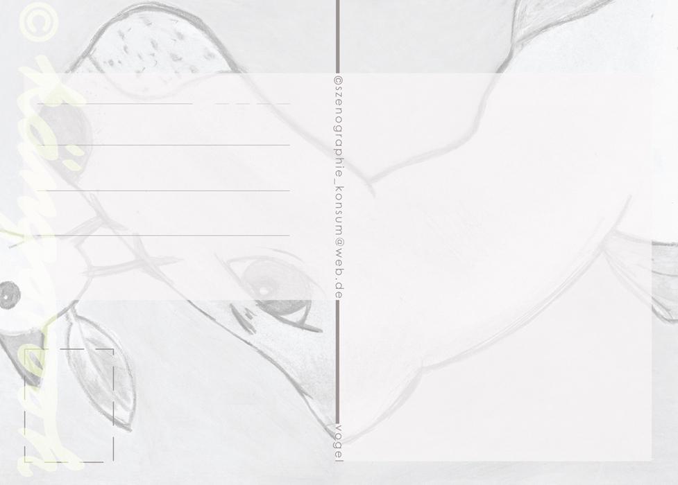 Postkarte Rückseite: löwe mit vogel / kängorooh / 2015