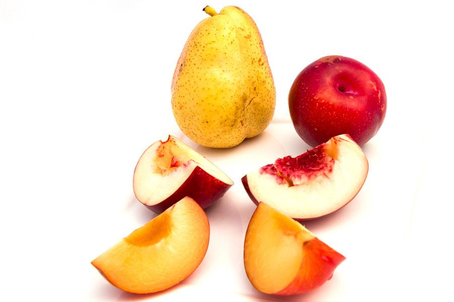 Lästige Fruchtfliegen vermeiden