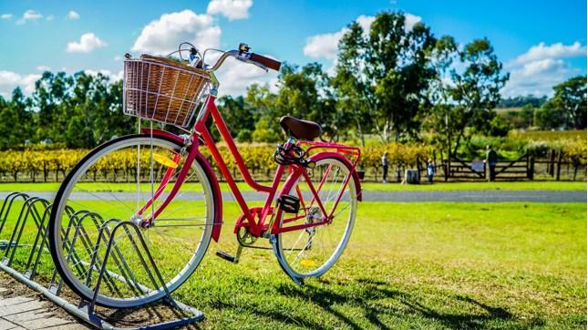 Fahrradreise nach Baccarat - die Stadt des Kristalls // Bildquelle: Pexels
