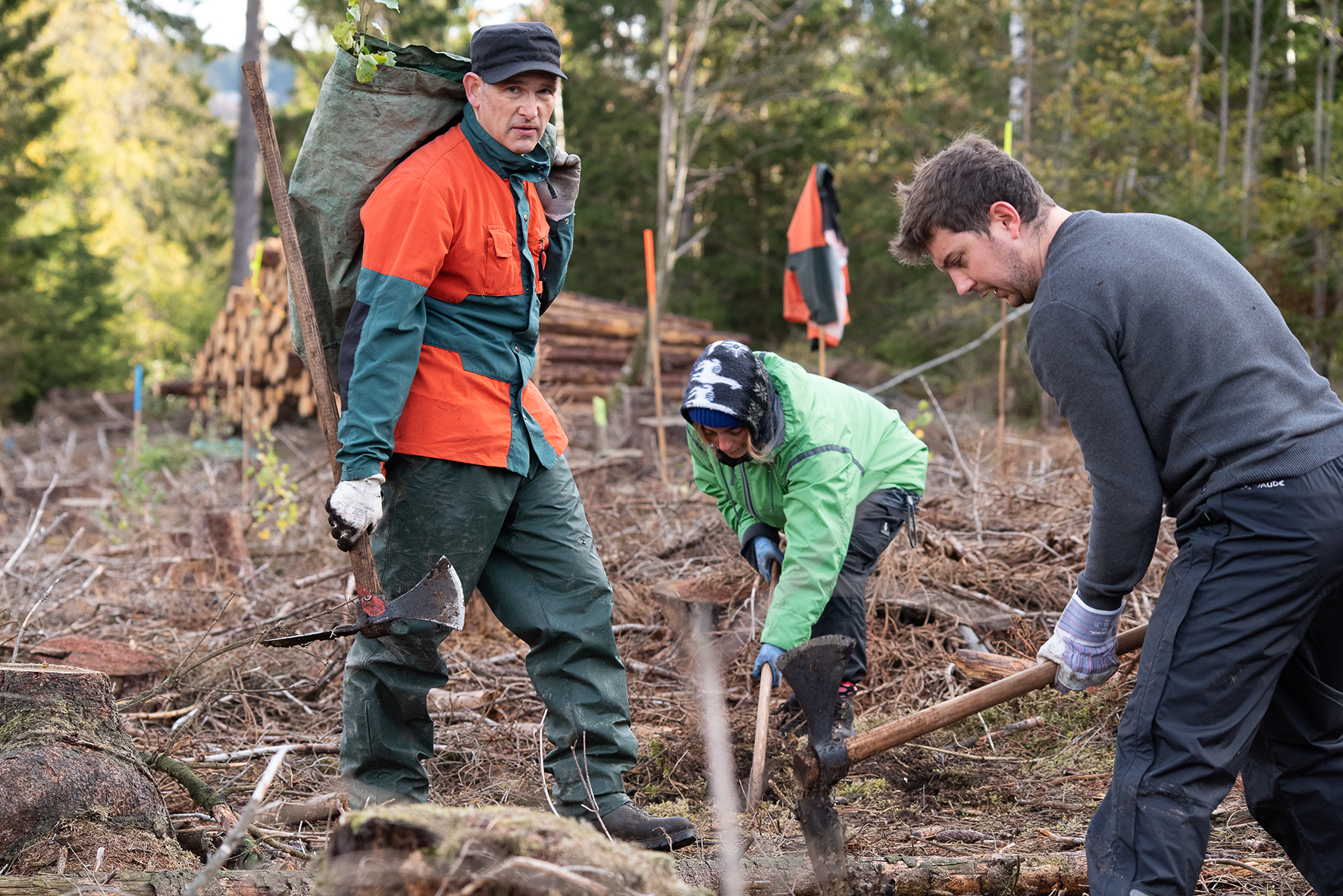 mein-dienstrad.de: Fahrrad leasen und Bäume pflanzen