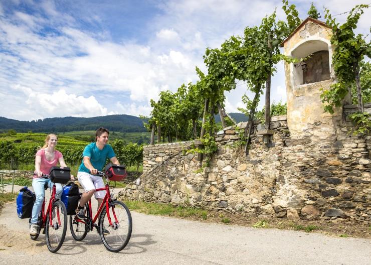 Auf dem Weg nach Wien passieren Radler auch die Wachau. Die Region ist für ihre weitläufigen Weinhänge und Obsthaine bekannt. Bildnachweis: Radweg-Reisen