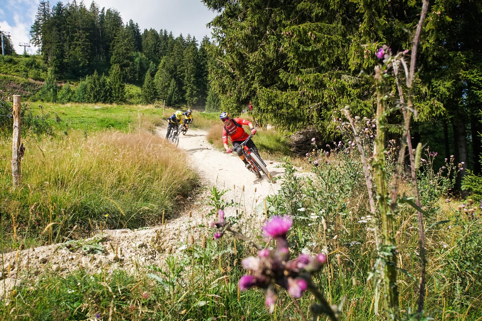 René Wildhaber unterwegs mit den Füchsen am BikerBerg Flumserberg