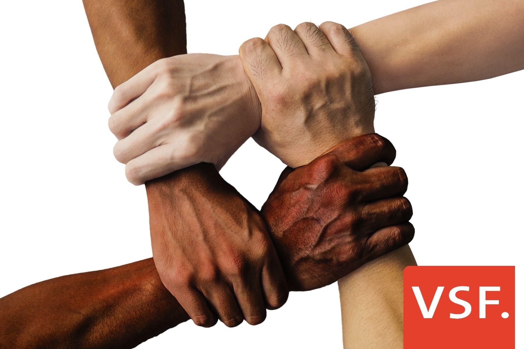 VSF begrüßt seine Neuzugänge im Verband