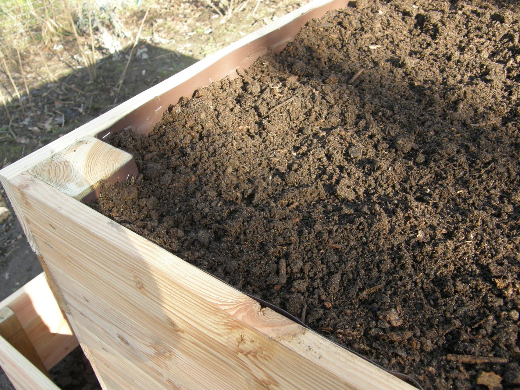 24. Als Pflanzschicht Gartenerde gemischt mit reifem Konpost bis zum Rand einfüllen