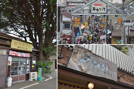有名なヒマラヤ杉とみかどパン店とにぎわう谷中銀座商店街