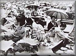 巨椋池の蓮見(写真:宇治市歴史資料館提供)