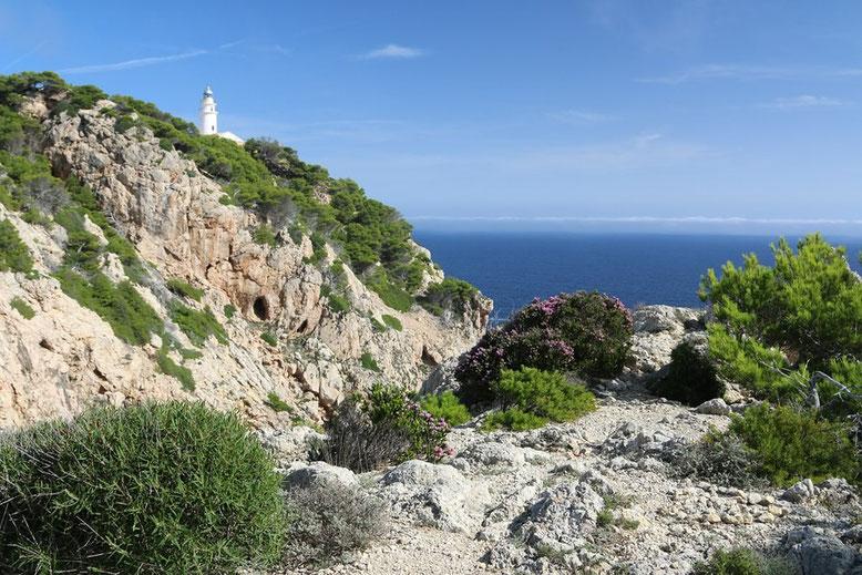 Mallorca Reisebericht