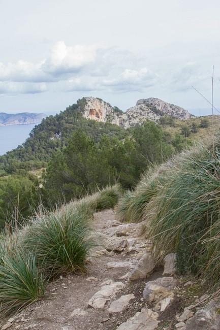 Kleine Gratwanderung Talaia d'Alcudia