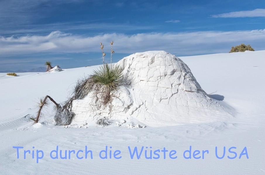 Brennis Reisewelt