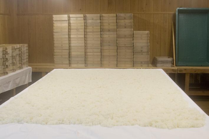 蒸米を広げて冷ます。麹造りにかかる時間は使用する製品にもよるが、48時間から52時間程度とのこと。