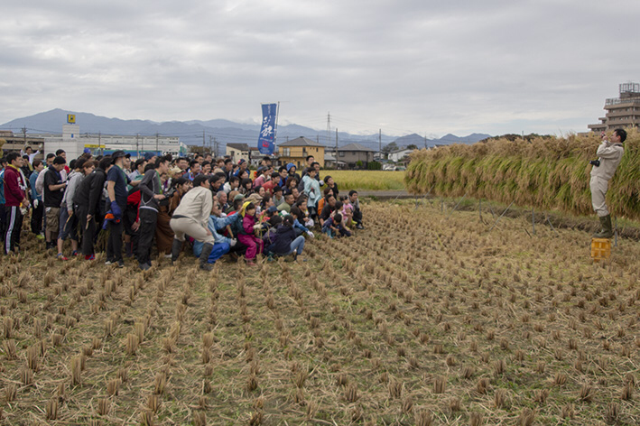 予定の田んぼを刈り終わって、全員で記念撮影。寺田副杜氏、反ってます!