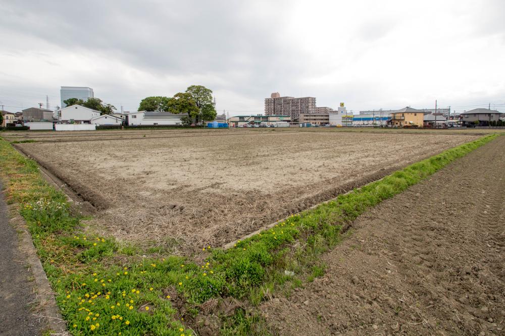 今年4月半ばの田んぼと蔵の風景。冬場は「冬季湛水」(田んぼに水を張ったまま)されていた田んぼだが、すでに水は抜かれていた。