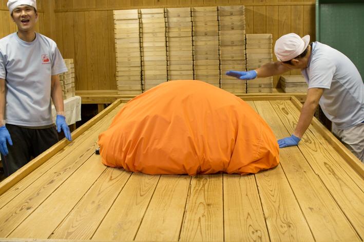 種切りから床もみまでが終わった! 「室の中は毎日が運動会です」と笑う犬塚さん。