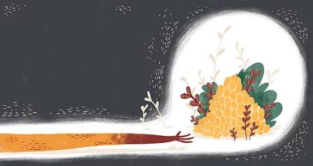 Kinderbuch portugiesisch -  Margarida Rocha - Há incendio na floresta