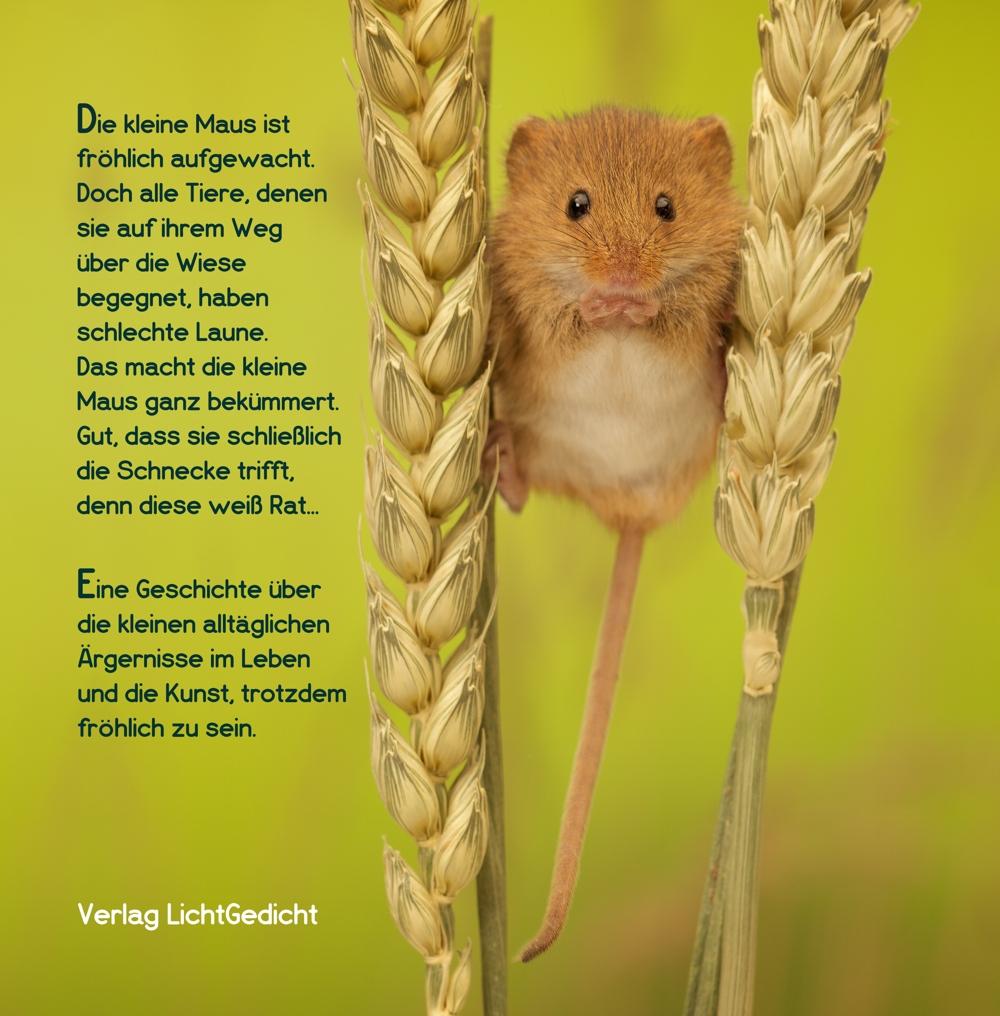 Verlag Lichtgedicht Fotografie Gedichte Und Moderne Kunst