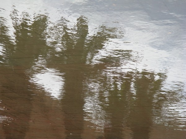 Le mirage - 9 x 12 - photo sur dibond avec caisse américaine