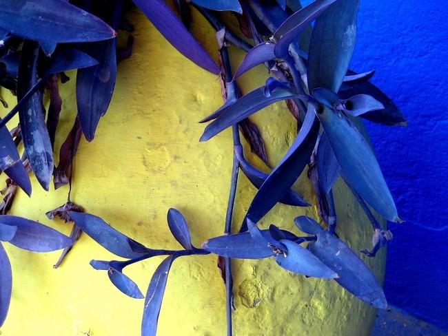 Marrakech blues - 9 x 12 - photo sur dibond avec caisse américaine