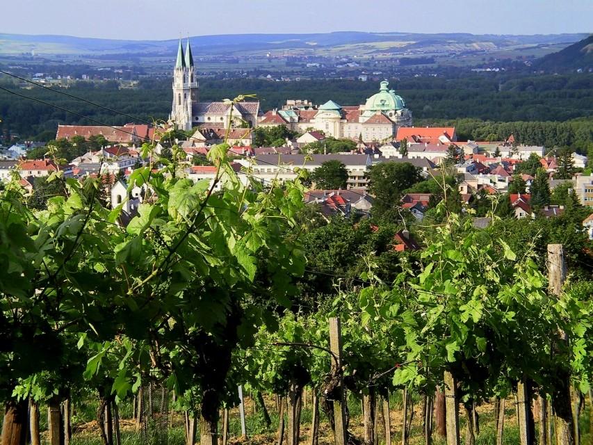 Wein und Kultur vereint